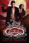 Cover image for A soldier of shadows