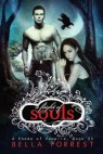 Cover image for A flight of souls